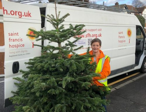 Saint Francis Hospice Christmas tree recycling cancelled
